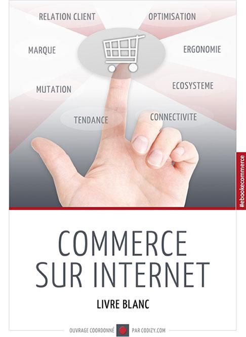 Livre blanc: Commerce sur Internet en 2013. Etat des lieux.